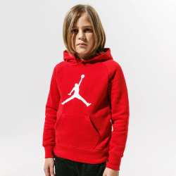 Nike Jordan Logo Fleece PO Hoodie 956326-R78